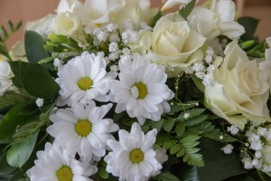flowers-3990696_1920